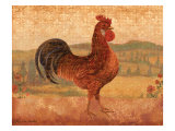 Florentine Rooster II