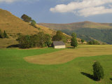 Agricultural Landscape of Farmland and Hills Near Salers  Cantal  Auvergne  France