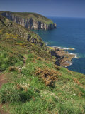 Landscape of Cliffs Along the Coastline at Cap Frehel  Cote D'Emeraude  in Brittany  France  Europe