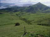 Landscape of Volcanic Hills Looking to Taiaroa Head  Albatross  Otago Peninsula  New Zealand