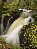 Small Waterfall on Aira River  Ullswater  Cumbria  England  United Kingdom  Europe