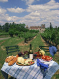 Table Set with a Picnic Lunch in a Vineyard in Aquitaine  France  Europe