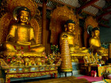 Dafo Buddhist Temple  Three Statues in Interior  Guangzhou  Guangdong  China