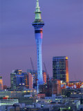 Sky Tower and City Skyline at Dusk  Auckland  North Island  New Zealand  Pacific