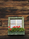 Typical Window Box  Otztal Valley  Tyrol  Austria  Europe