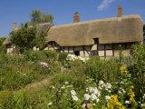 Anne Hathaway's Thatched Cottage  Shottery Near Stratford-Upon-Avon  Warwickshire  England  UK
