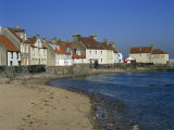 Pittenweem  Neuk of Fife  Scotland  United Kingdom  Europe