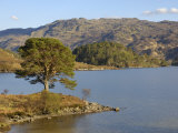 Loch Morar  Highlands  Scotland  United Kingdom  Europe