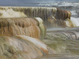 Canary Spring  Mammoth Hot Springs  Yellowstone National Park  Wyoming  USA