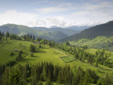 Carpathian Mountains North of Campulung Moldovenesc  Moldavia  Southern Bucovina  Romania  Europe