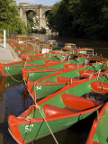 Rowing Boats for Hire on the River Nidd at Knaresborough  Yorkshire  England  United Kingdom