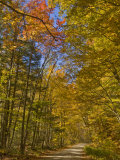 Autumn Fall Colours  Vermont Back Country Road Near West Arlington  Virginia  USA