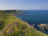 North Antrim Coast Path to the Giant's Causeway  County Antrim  Ulster  Northern Ireland  UK