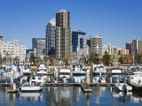 Tuna Harbor and Skyline  San Diego  California  United States of America  North America