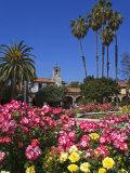 Roses  Central Courtyard  Mission San Juan Capistrano  Orange County  California  USA
