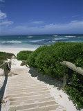 Bales Beach  Seal Bay Conservation Park  Kangaroo Island  South Australia  Australia  Pacific