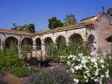 Mission San Juan Capistrano  Orange County  California  United States of America  North America