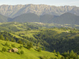 Transylvanian Alps  Near Fundata  Transylvania  Romania  Europe