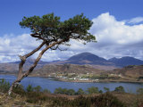View over Lake and Hills  Loch Shieldaig  Shieldaig  Wester Ross  Highlands  Scotland  UK