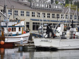 Fishermen's Terminal  Seattle  Washington State  United States of America  North America