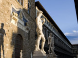 Statue of David with Shadow  Ufizzi in Background  Piazza Della Signoria  Florence  Tuscany  Italy