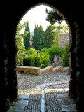 Alcazaba  Malaga  Andalucia  Spain  Europe