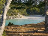 Macarella Beach  Menorca  Balearic Islands  Spain  Mediterranean  Europe