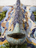 Detail  Dragon Fountain  Parc Guell  UNESCO World Heritage Site  Barcelona  Catalonia  Spain