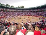 San Fermin Festival Plaza De Toros  Pamplona  Navarra  Spain  Europe