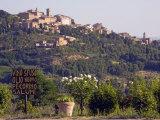 Montepulciano  Val D'Orcia  Tuscany  Italy  Europe