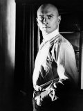 The Brothers Karamazov  Yul Brynner  1958