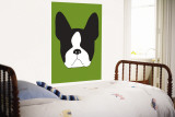 Green Boston Terrier