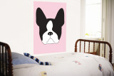 Pink Boston Terrier