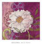 White Peony