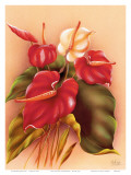 Hawaiian Red and White Anthuriums c1940s