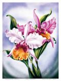 Hawaiian Pink Orchid  c1940s