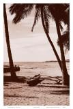 Hawaiian Outrigger Canoe