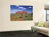 Ayers Rock  Northern Territory  Australia