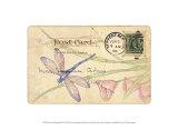 Postcard Dragonfly II
