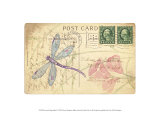 Postcard Dragonfly I