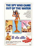 The Glass Bottom Boat  with Edward Andrews  Doris Day  Arthur Godfrey  and Rod Taylor  1966