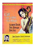 Cat on a Hot Tin Roof  Elizabeth Taylor  Paul Newman  1958