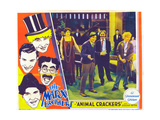 Animal Crackers  Harpo Marx  Zeppo Marx  Groucho Marx  Chico Marx  Margaret Dumont  1930