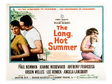 The Long  Hot Summer  Joanne Woodward  Paul Newman  Lee Remick  Anthony Franciosa  1958