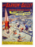 The Grand Water Circus in the Barnum and Bailey Circus  1895