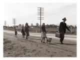Homeless Migrant Family of Seven  Walking the Highway from Phoenix  Arizona  1939