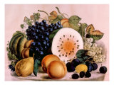 Autumn Fruits  1861