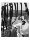 Young African American Woman Working in Midst of Clotheslines Heavy with Sheets and Stockings  1902