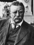 Theodore Roosevelt  1900's