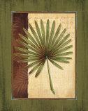 Palm Tropical I